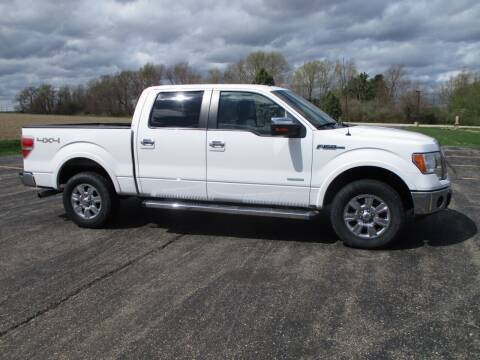 2011 Ford F-150 for sale at Crossroads Used Cars Inc. in Tremont IL