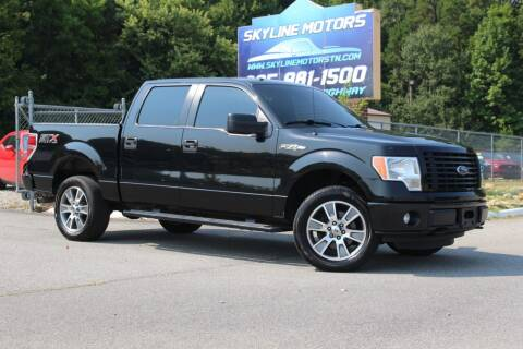 2014 Ford F-150 for sale at Skyline Motors in Louisville TN