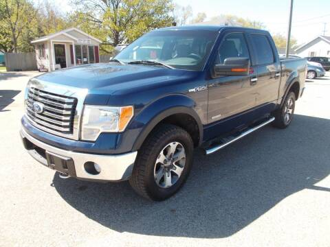 2011 Ford F-150 for sale at Jenison Auto Sales in Jenison MI