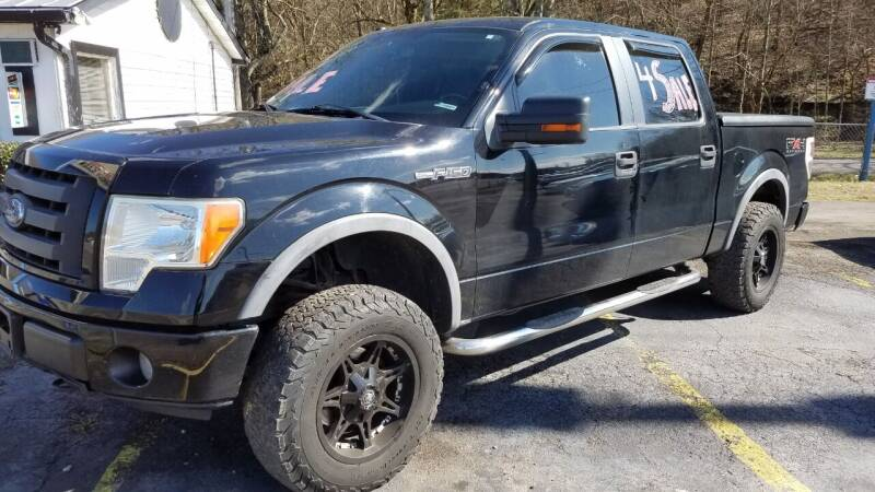 2009 Ford F-150 for sale at G T Auto Group in Goodlettsville TN