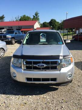 2010 Ford Escape for sale at Simon Automotive in East Palestine OH