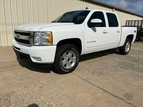 2010 Chevrolet Silverado 1500 for sale at Freeman Motor Company in Lawrenceville VA