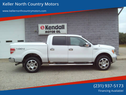 2011 Ford F-150 for sale at Keller North Country Motors in Howard City MI