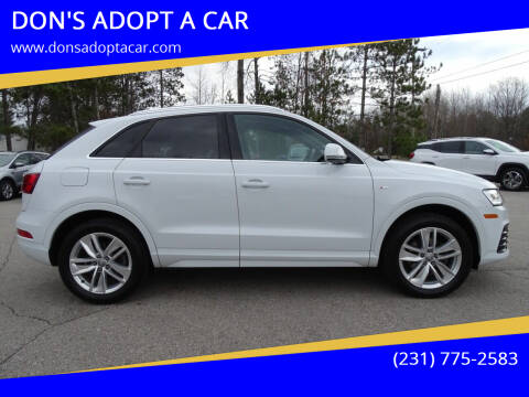 2018 Audi Q3 for sale at DON'S ADOPT A CAR in Cadillac MI