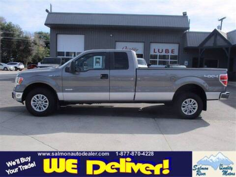 2014 Ford F-150 for sale at QUALITY MOTORS in Salmon ID