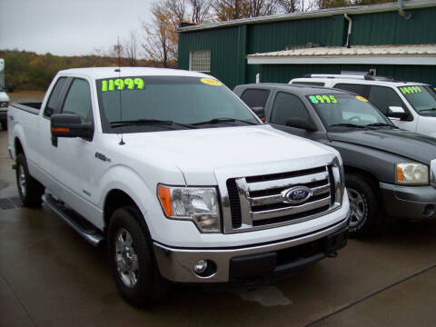 2011 Ford F-150 for sale at Summit Auto Inc in Waterford PA