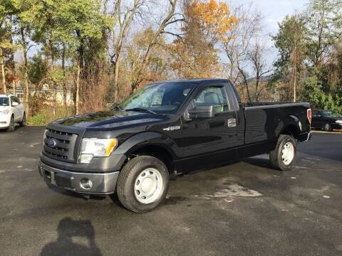 2010 Ford F-150 for sale at AFFORDABLE AUTO SVC & SALES in Bath NY