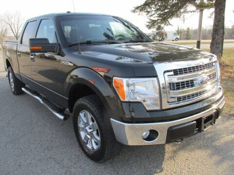 2014 Ford F-150 for sale at Buy-Rite Auto Sales in Shakopee MN