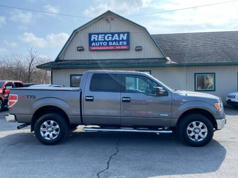 2013 Ford F-150 for sale at Mark Regan Auto Sales in Oswego NY