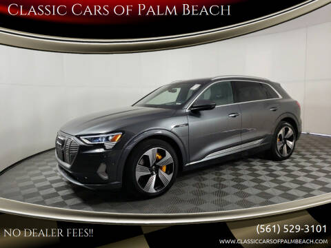2019 Audi e-tron for sale at Classic Cars of Palm Beach in Jupiter FL