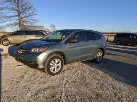 2012 Honda CR-V for sale at Halstead Motors LLC in Halstead KS