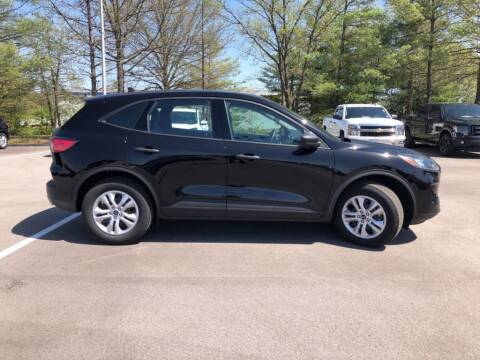 2020 Ford Escape for sale at St. Louis Used Cars in Ellisville MO