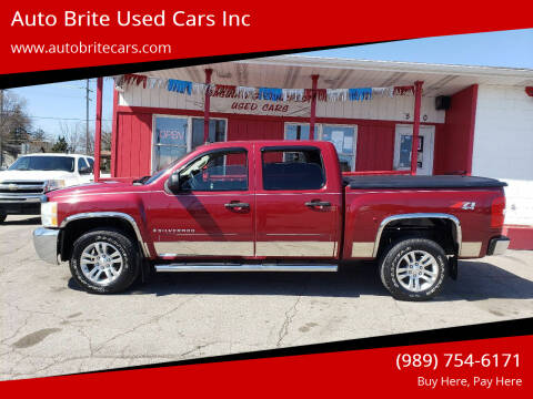 2007 Chevrolet Silverado 1500 for sale at Auto Brite Used Cars Inc in Saginaw MI