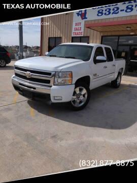2009 Chevrolet Silverado 1500 for sale at TEXAS AUTOMOBILE in Houston TX