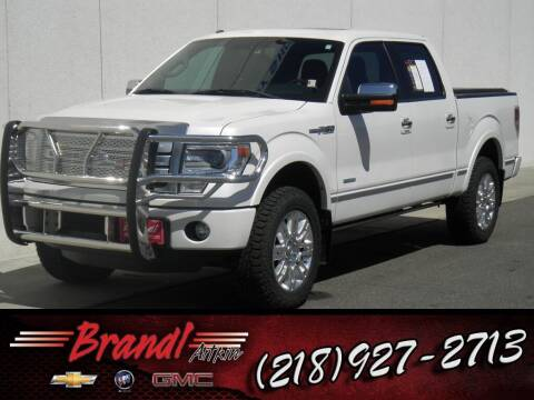 2013 Ford F-150 for sale at Brandl GM in Aitkin MN