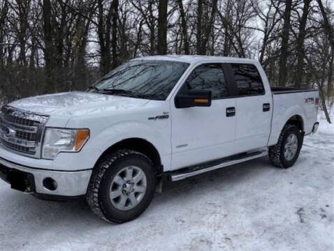 2014 Ford F-150 for sale at Torgerson Auto Center in Bismarck ND