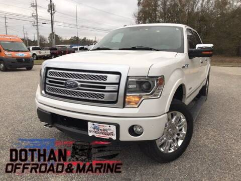 2013 Ford F-150 for sale at Dothan OffRoad And Marine in Dothan AL