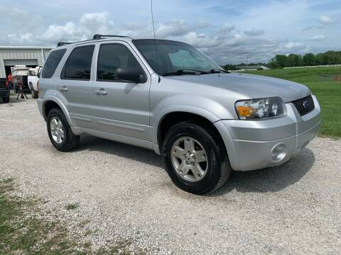 2006 Ford Escape for sale at Nice Cars in Pleasant Hill MO