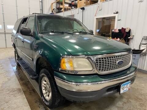 1999 Ford Expedition for sale at RDJ Auto Sales in Kerkhoven MN