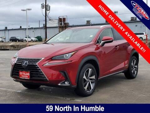 2020 Lexus NX 300h for sale at TEJAS TOYOTA in Humble TX