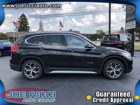 2017 BMW X1 for sale at Mr Intellectual Cars in Shelby Township MI