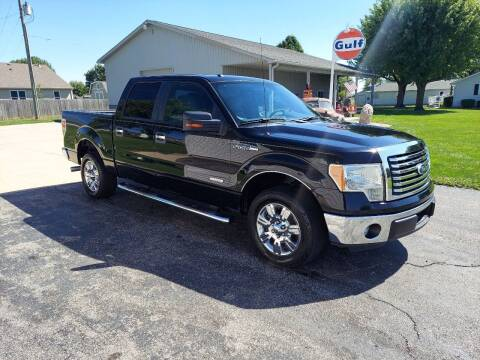 2011 Ford F-150 for sale at CALDERONE CAR & TRUCK in Whiteland IN