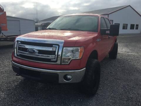 2014 Ford F-150 for sale at CAROLINA TOY SHOP LLC in Hartsville SC