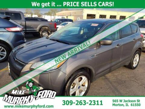 2014 Ford Escape for sale at Mike Murphy Ford in Morton IL
