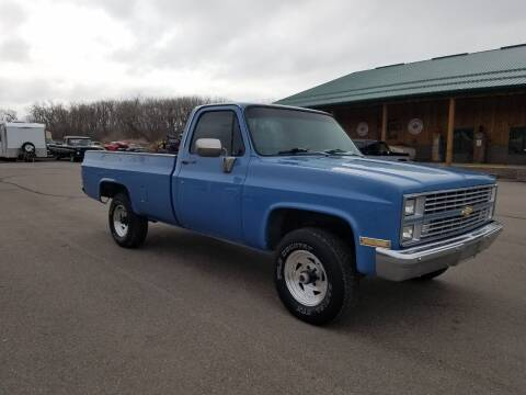 1983 Chevrolet C/K 10 Series for sale at Pro Auto Sales and Service in Ortonville MN