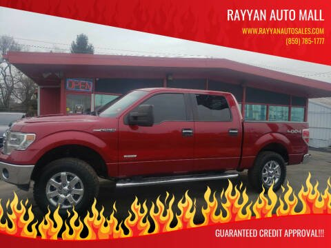 2014 Ford F-150 for sale at Rayyan Auto Mall in Lexington KY
