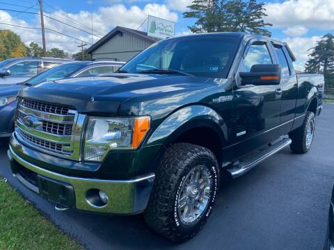 2013 Ford F-150 for sale at Pine Grove Auto Sales LLC in Russell PA