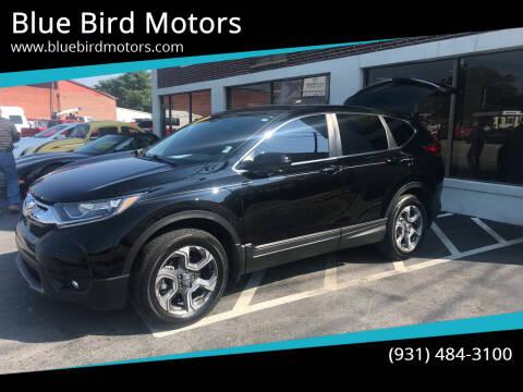 2018 Honda CR-V for sale at Blue Bird Motors in Crossville TN