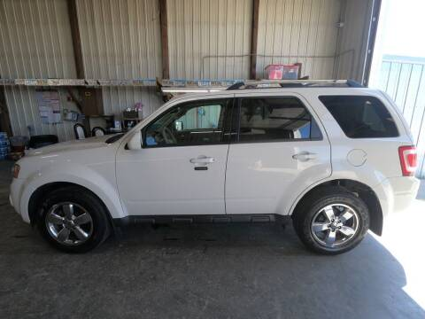 2010 Ford Escape for sale at Alpha Auto in Toronto SD
