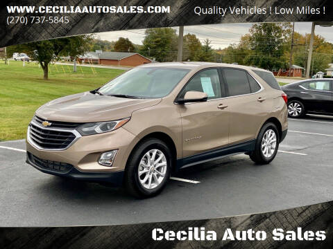 2018 Chevrolet Equinox for sale at Cecilia Auto Sales in Elizabethtown KY