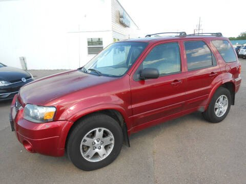 2005 Ford Escape for sale at Salmon Automotive Inc. in Tracy MN