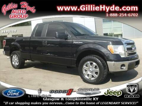 2013 Ford F-150 for sale at Gillie Hyde Auto Group in Glasgow KY