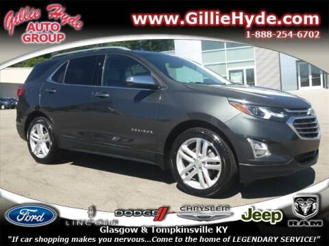 2018 Chevrolet Equinox for sale at Gillie Hyde Auto Group in Glasgow KY