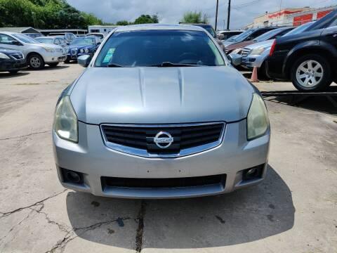 2008 Nissan Maxima for sale at Dubik Motor Company in San Antonio TX