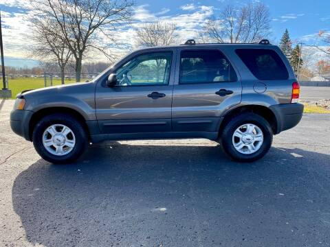 2003 Ford Escape for sale at Caruzin Motors in Flint MI