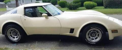 1981 Chevrolet Corvette for sale at Classic Car Deals in Cadillac MI