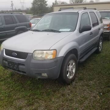 2003 Ford Escape for sale at CAR-MART AUTO SALES in Maryville TN