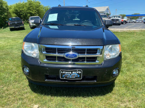 2011 Ford Escape for sale at Lewis Blvd Auto Sales in Sioux City IA
