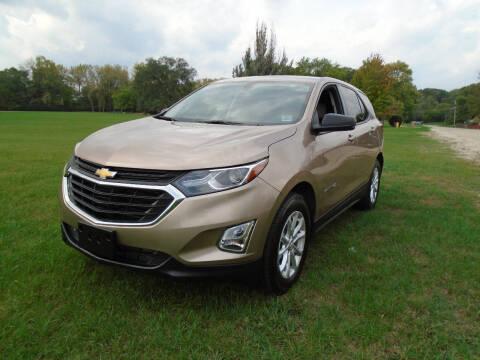 2019 Chevrolet Equinox for sale at Triangle Auto Sales in Elgin IL