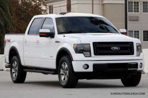 2013 Ford F-150 for sale at Euro Auto Sales in Santa Clara CA
