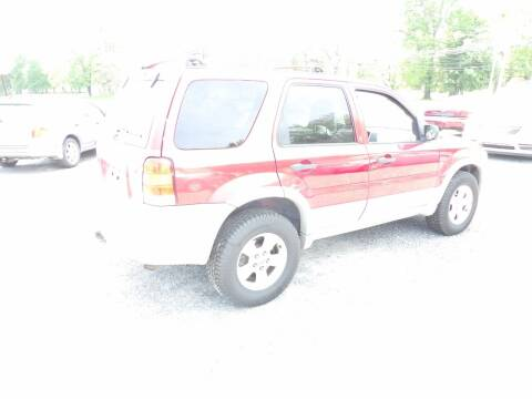 2007 Ford Escape for sale at English Autos in Grove City PA
