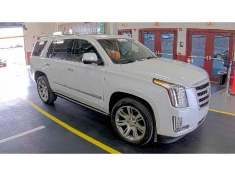 2016 Cadillac Escalade for sale at Adams Auto Group Inc. in Charlotte NC