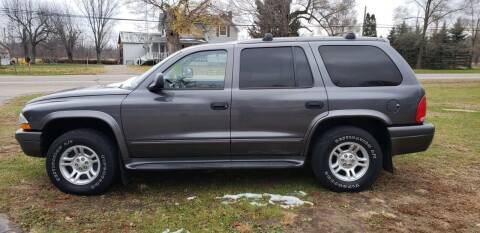 2003 Dodge Durango for sale at Larrys Used Cars in Hartford MI