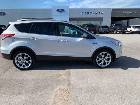 2014 Ford Escape for sale at St. Louis Used Cars in Ellisville MO