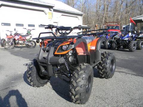 2020 VITACCI 0124 125cc UTILITY for sale at A C Auto Sales in Elkton MD