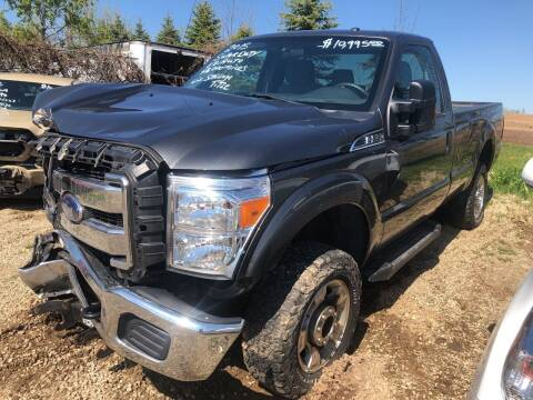 2015 Ford F-250 Super Duty for sale at Don's Sport Cars in Hortonville WI